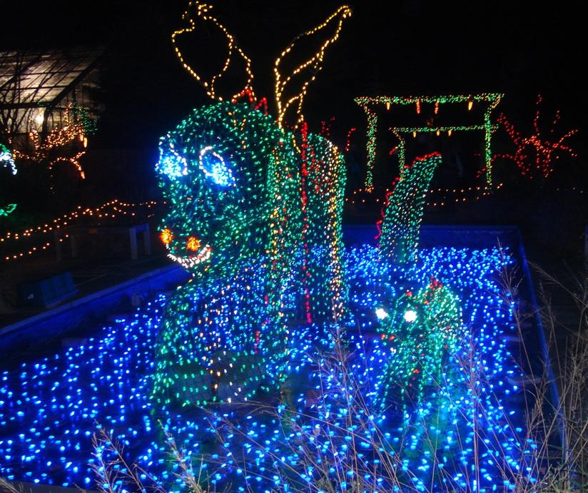 The Garden Of Lights Brookside Gardens Eclectic Lamb