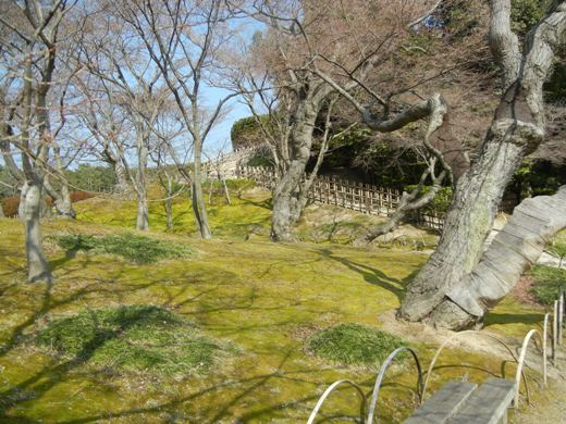 Korakuen Early Spring