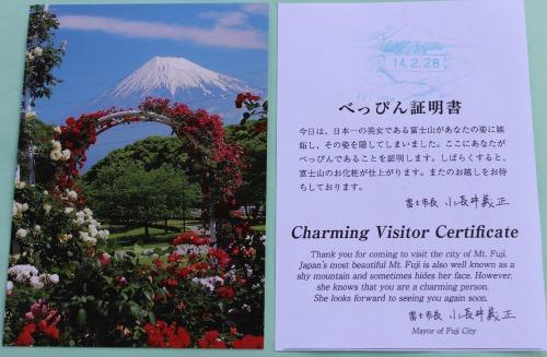 Fuji Shy Certificate