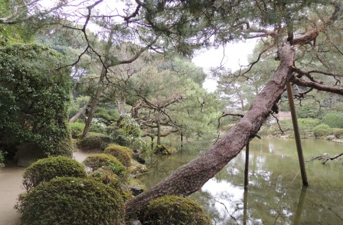 Garden at Heian Shrine