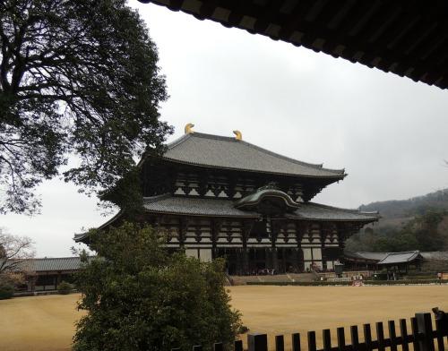 Nara Buddah Building