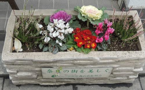 Planter in Nara