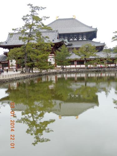 Reflection Nara