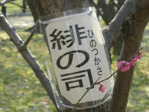 Sign on Plum Tree