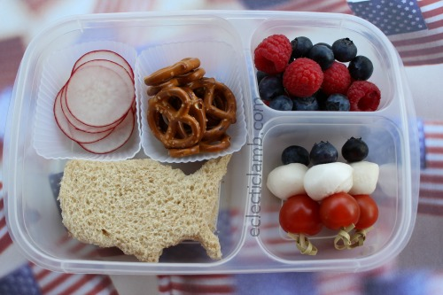 USA Red White Blue Lunch