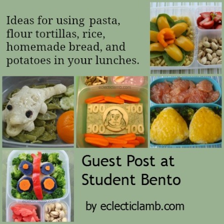 Student Bento Guest Post Collage