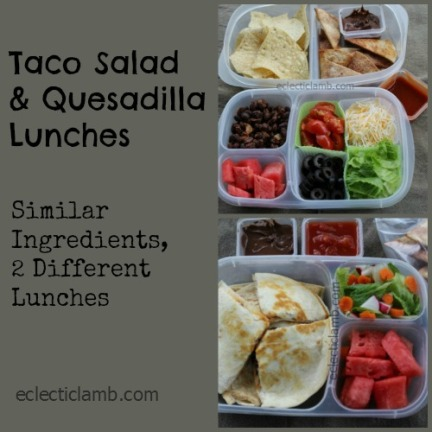 Taco and Quesadilla Lunch Collage