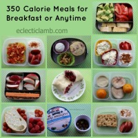 350 Calorie Meal Ideas