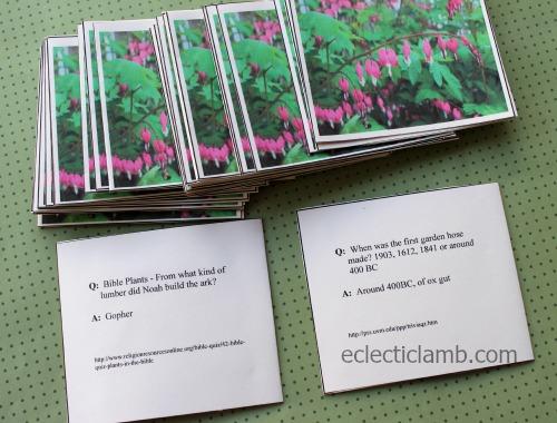 Garden Trivia cards questions