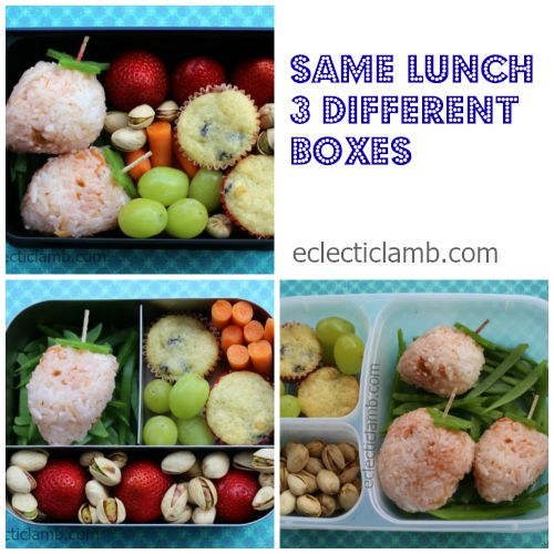 same lunch different boxes collage