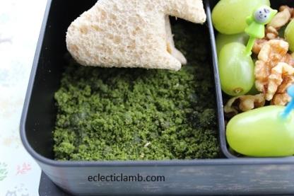 Fairy moss lunch close