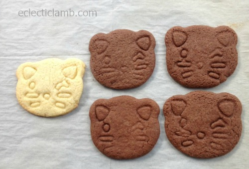 cat cookies after baking