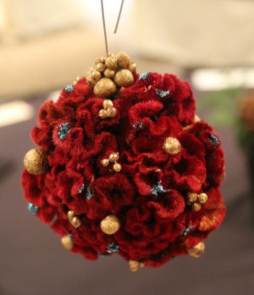 cockscomb-ornament-flower-show