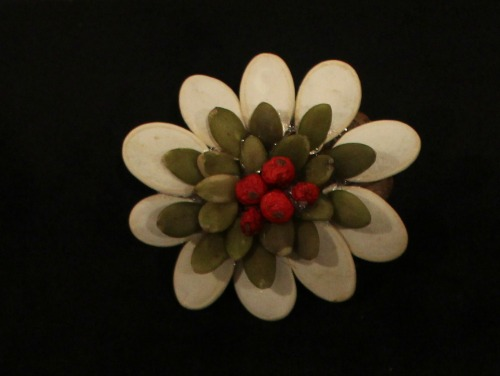 pumpkin-seeds-natural-brooch-flower-show