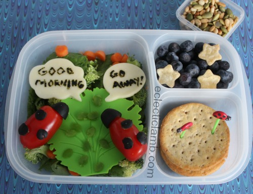 the-grouchy-ladybug-book-eric-carle-themed-lunch