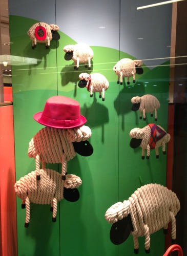 Sheep in Store Window