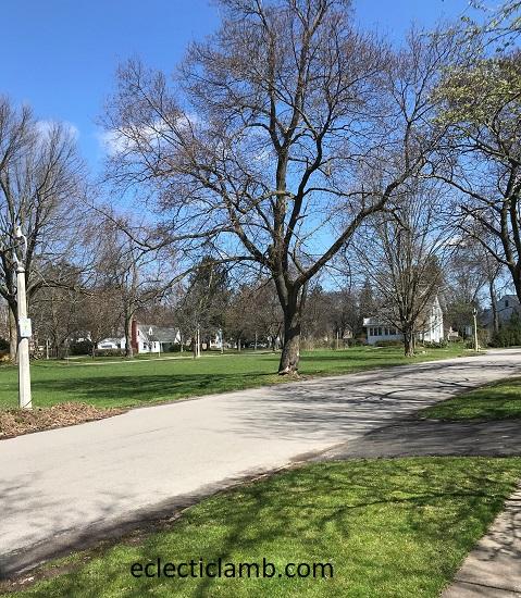 Antlers Park
