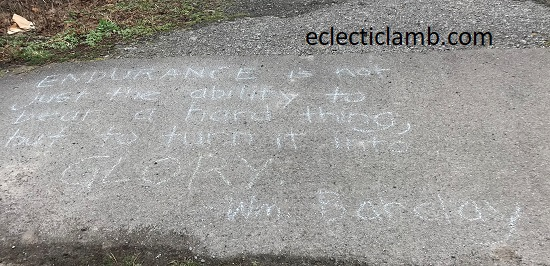 Endurance Quote Chalk